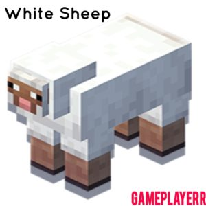 Minecraft Earth Sheep Wiki