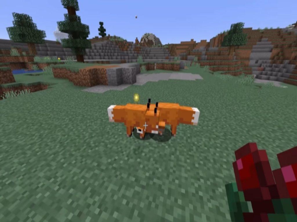 foxes in tiaiga biomes