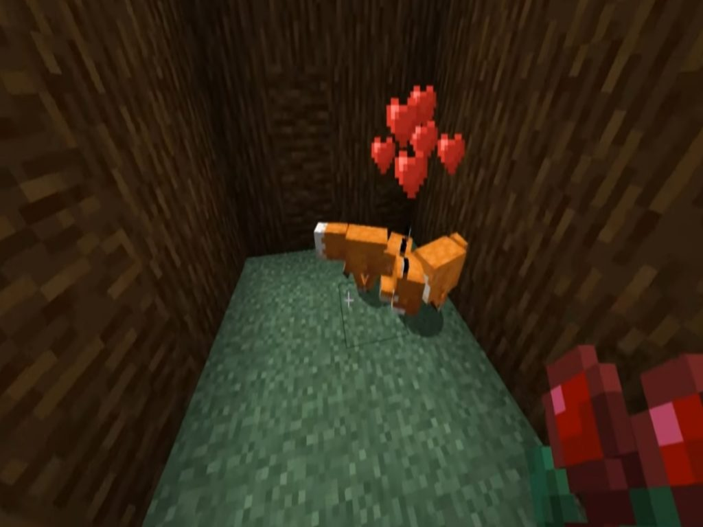 This is How to tame a fox in Minecraft