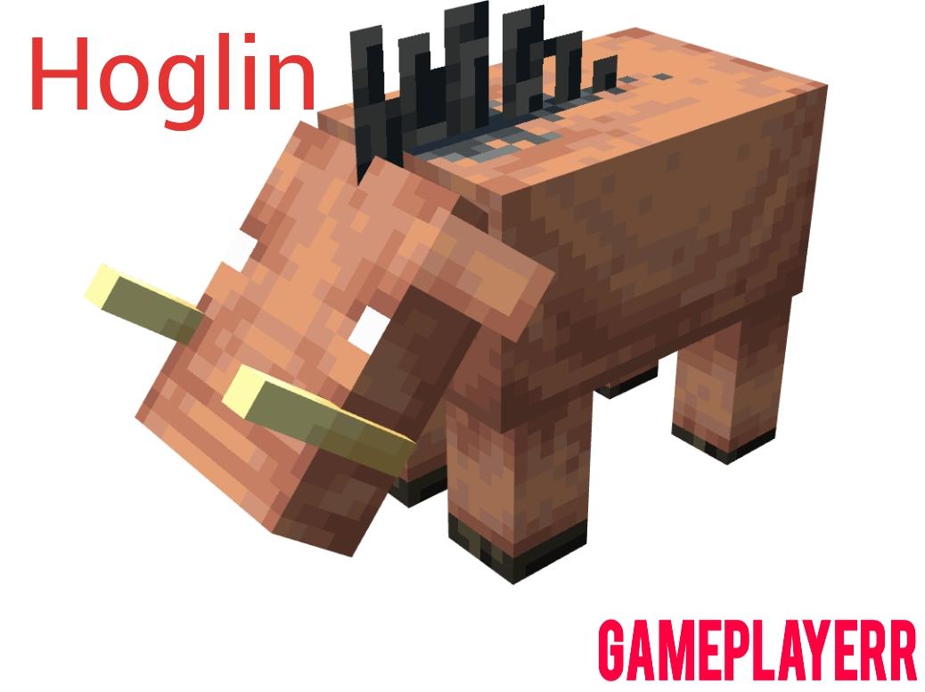 Hoglin in Minecraft