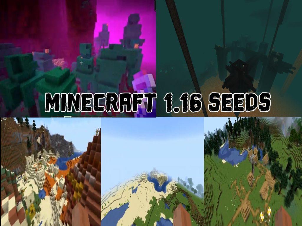 Minecraft 1.16 Seeds