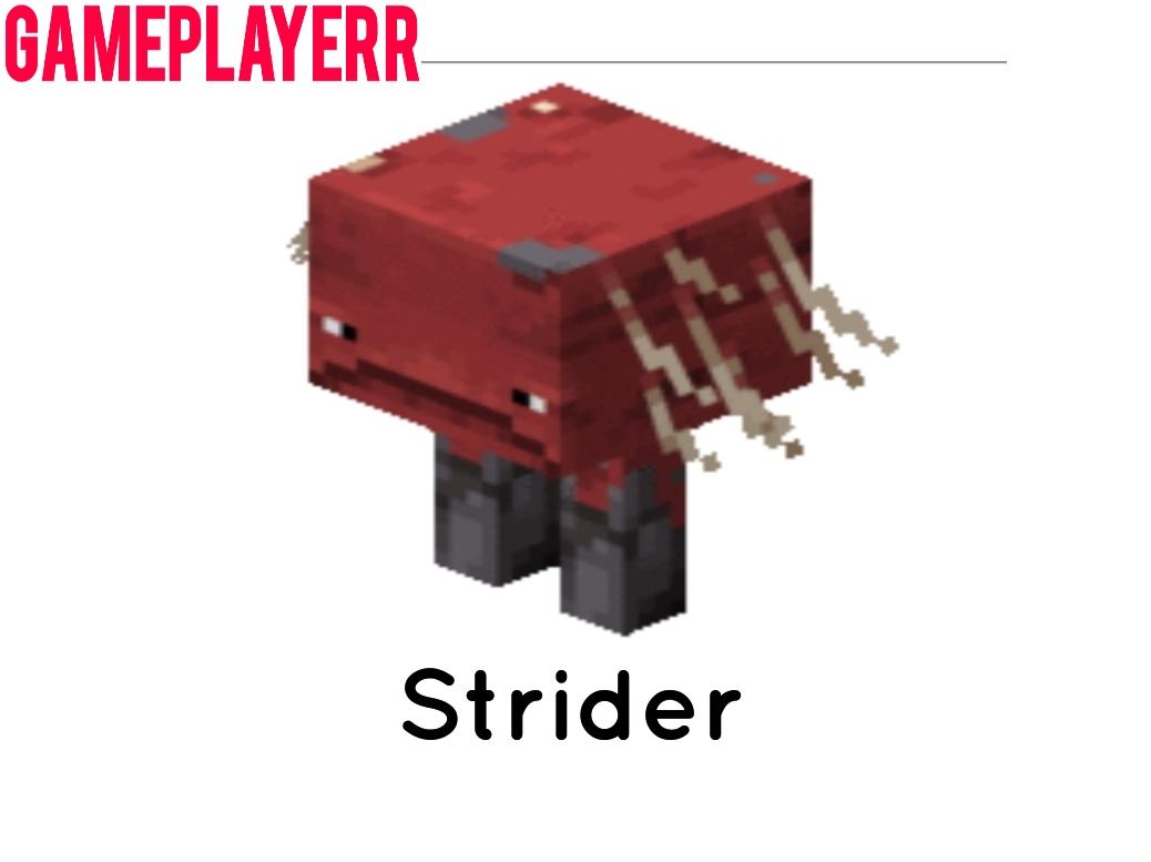 Minecraft Strider Mob