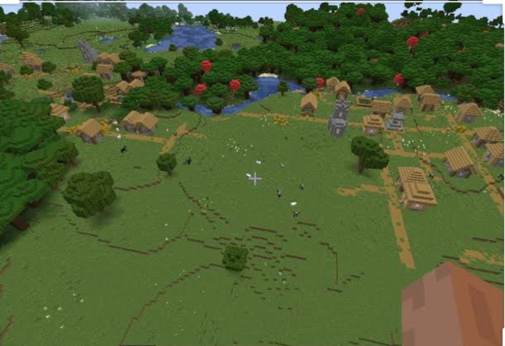 Double Village Seed