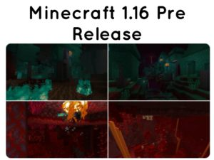 Minecraft 1.16 Pre Release