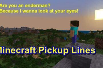 Best Minecraft Pickup Lines