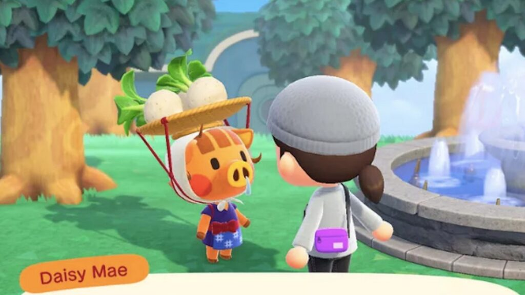 how to buy turnips in animal crossing