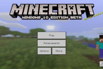minecraft windows 10 skins