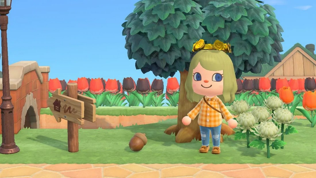 how to get acrons in animal crossing