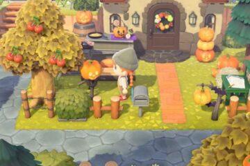 how to get pumpkins in animal crossing