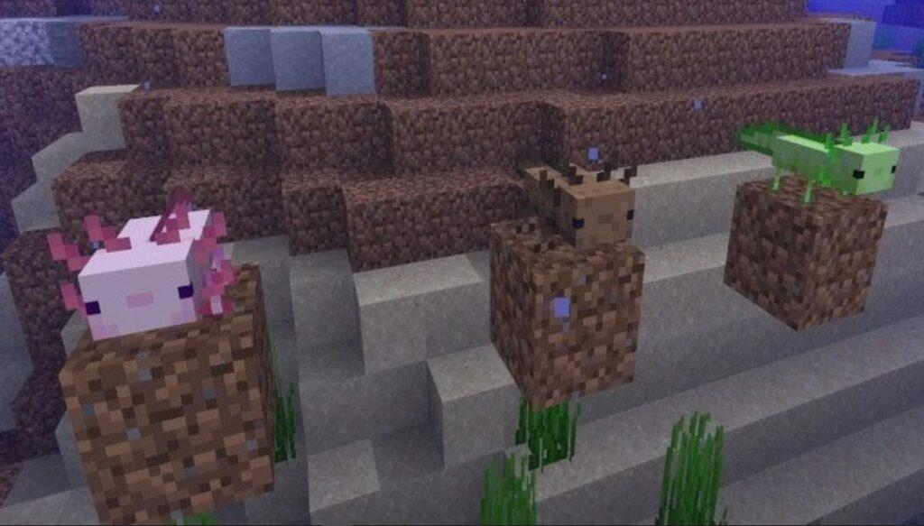 minecraft axolotl mob