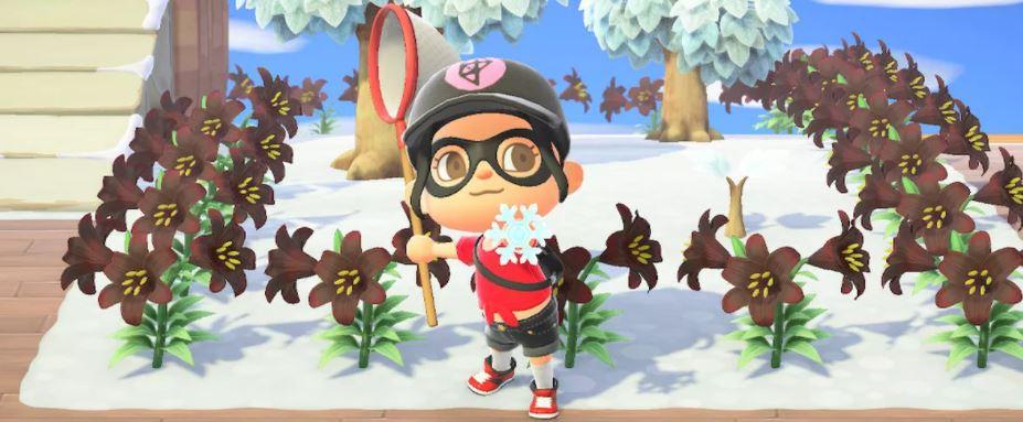 Animal Crossing Winter Snowfall Season