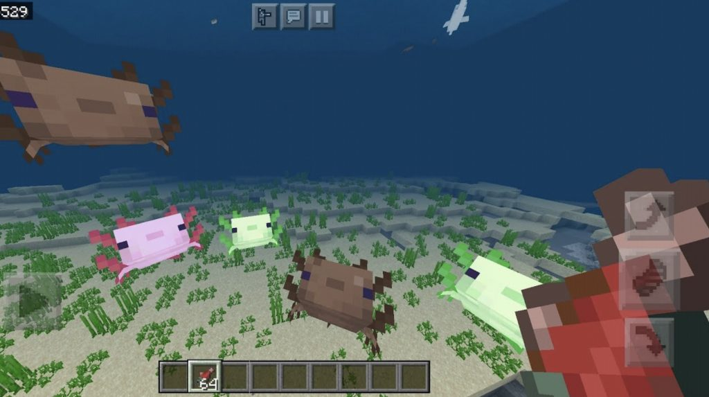 How To Tame Axolotls In Minecraft 1.17