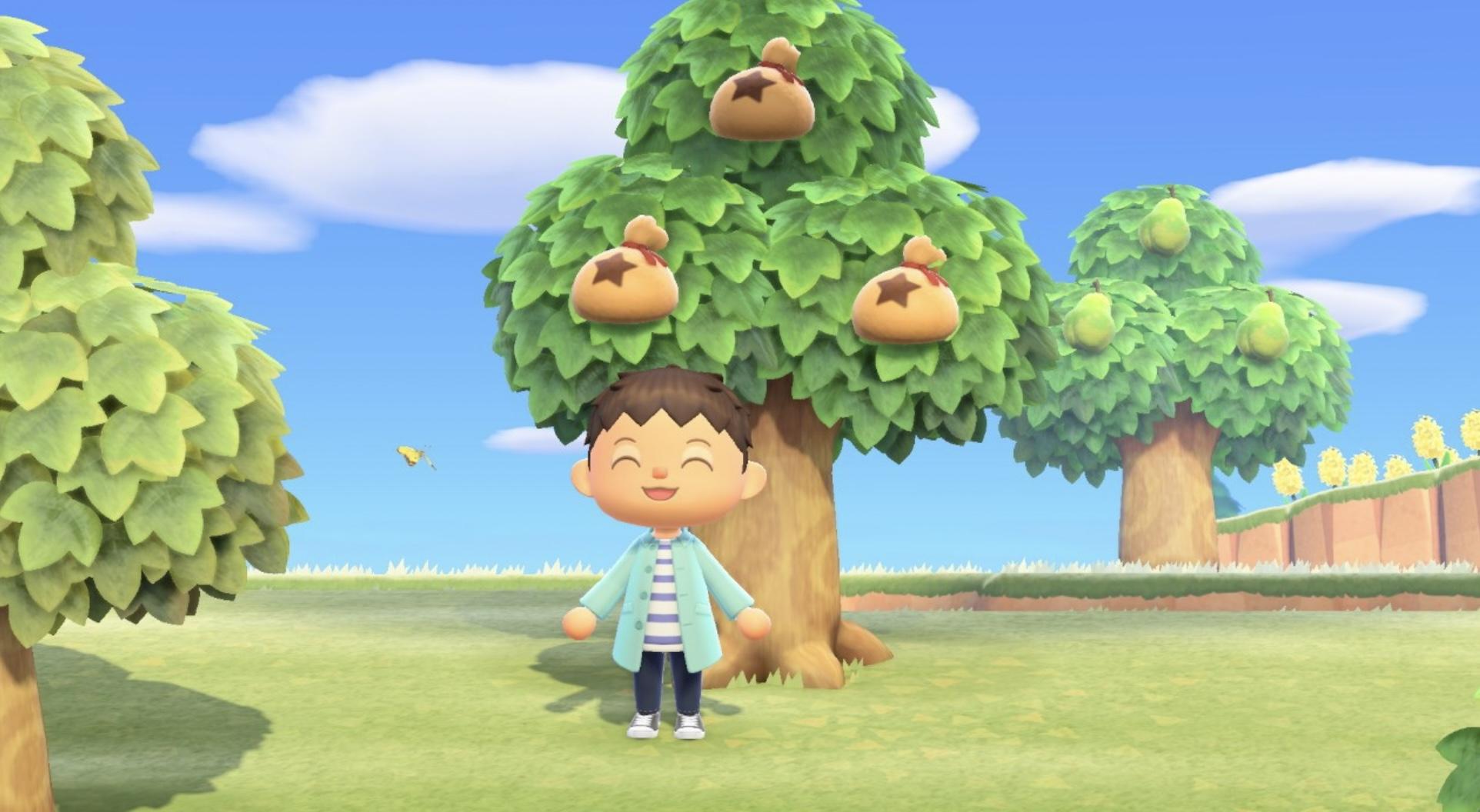 How To Plant Money Tree Animal Crossing