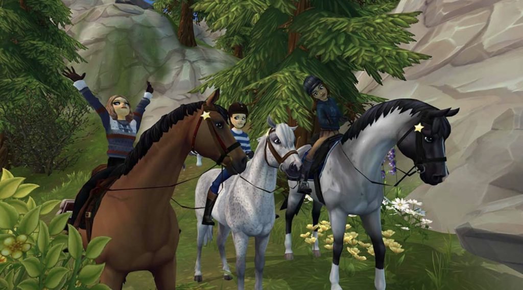 Star Stable Codes
